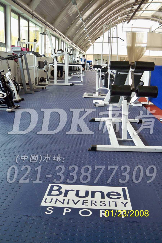 室内健身房运动地面材料(11)_蓝色