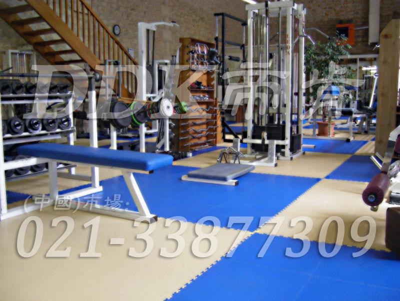 室内健身房运动地面材料(26)_天蓝色加浅灰色
