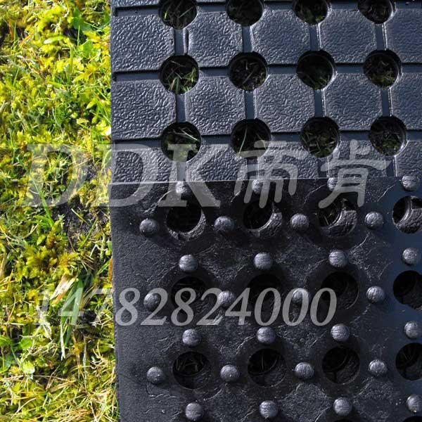 室外耐晒防滑自排水通道地毯样板图片,帝肯(DDK)_4500_222(室外草坪走道铺设材料)效果图,排水地垫,疏水防滑垫,疏水防滑地垫,疏水地毯,疏水地胶,疏水性材料